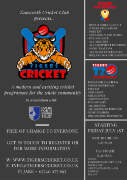 Tigers Cricket Poster